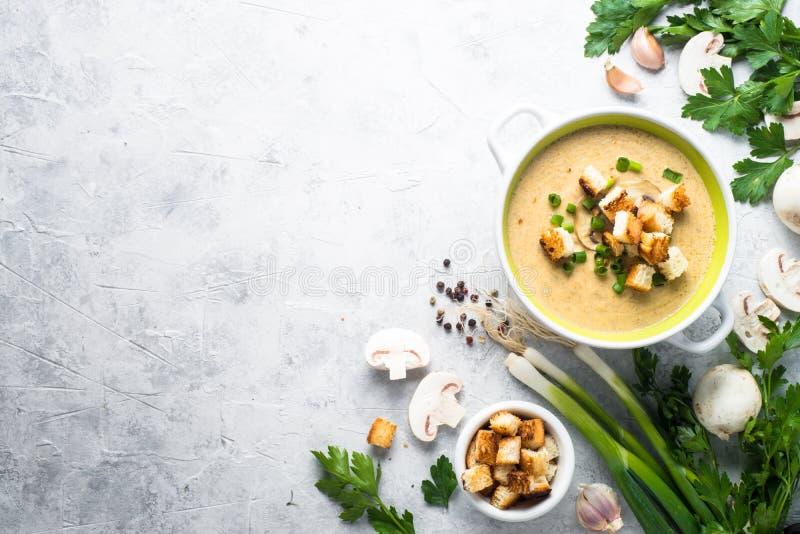 蘑菇汤纯汁浓汤用油煎方型小面包片 免版税库存照片