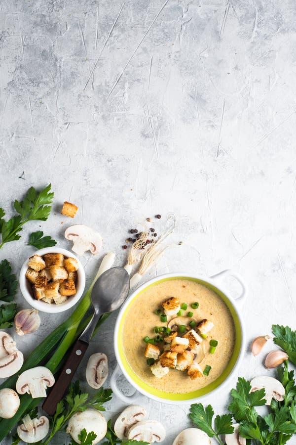 蘑菇汤纯汁浓汤用油煎方型小面包片 免版税库存图片
