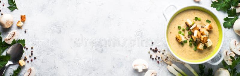 蘑菇汤纯汁浓汤用油煎方型小面包片 库存照片