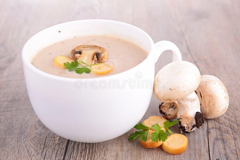蘑菇汤 图库摄影