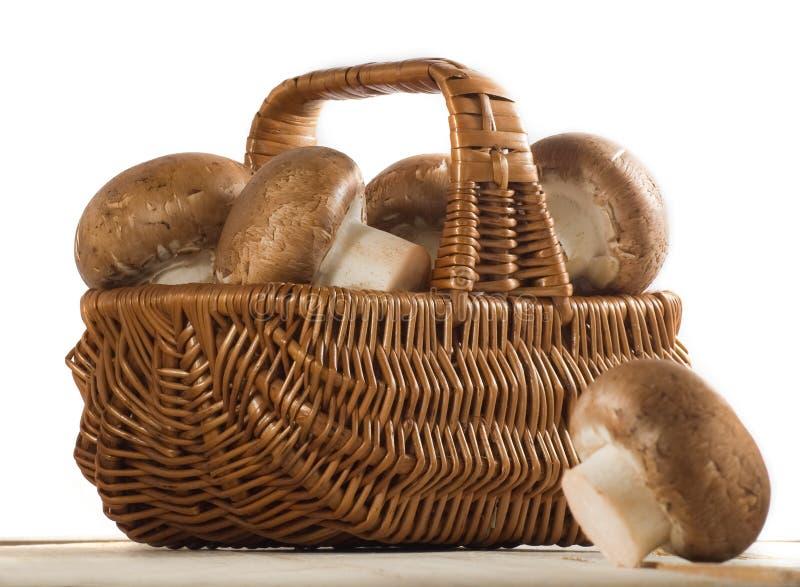 蘑菇蘑菇的图象在篮子关闭的 图库摄影