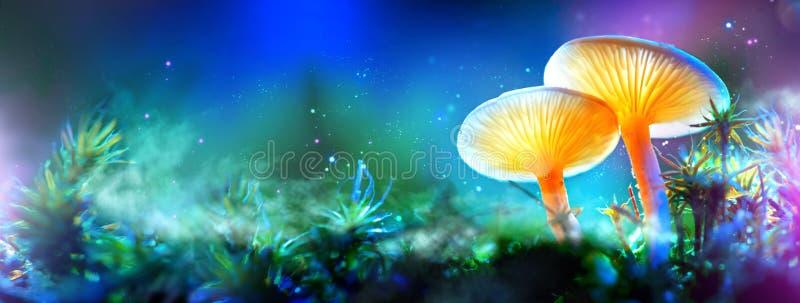蘑菇 幻想发光的蘑菇在奥秘黑暗森林里 免版税库存图片