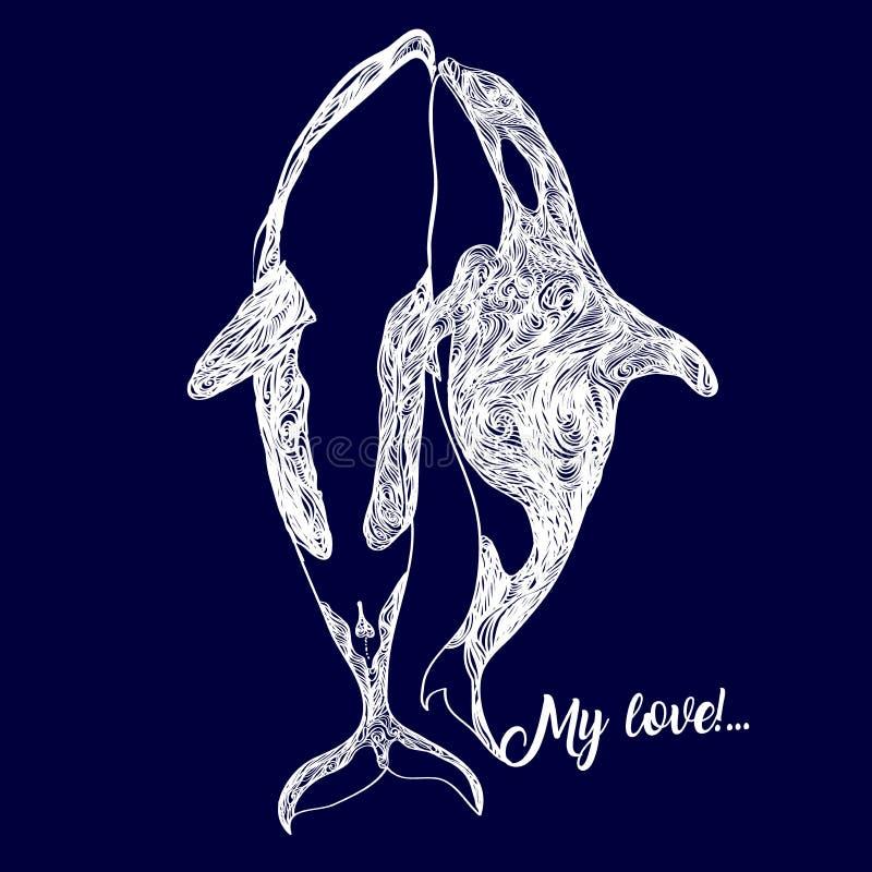 虎鲸家庭游泳一起呼吸在一张手拉的图画翻译成传染媒介的海洋里面 向量例证