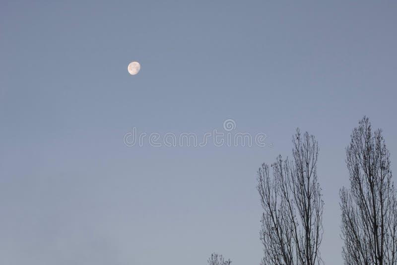 虚度在早晨时间的天空有蓝天背景 库存照片