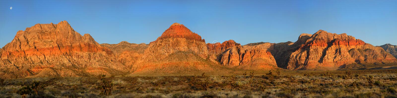 虚度在红色岩石峡谷,日出的内华达 库存图片