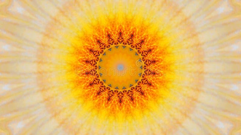 虹膜花的被反映的作用 库存例证