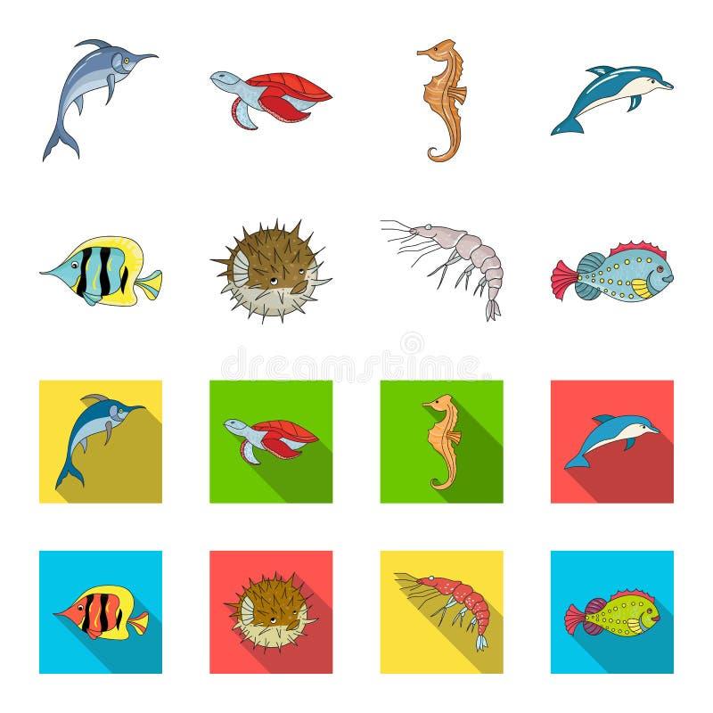 虾、鱼、猬和其他种类 海洋动物设置了在动画片,平的样式传染媒介标志股票的汇集象 向量例证