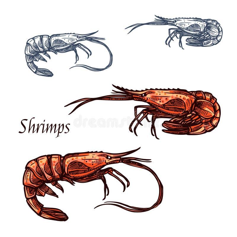 虾大虾海鲜传染媒介剪影象 皇族释放例证