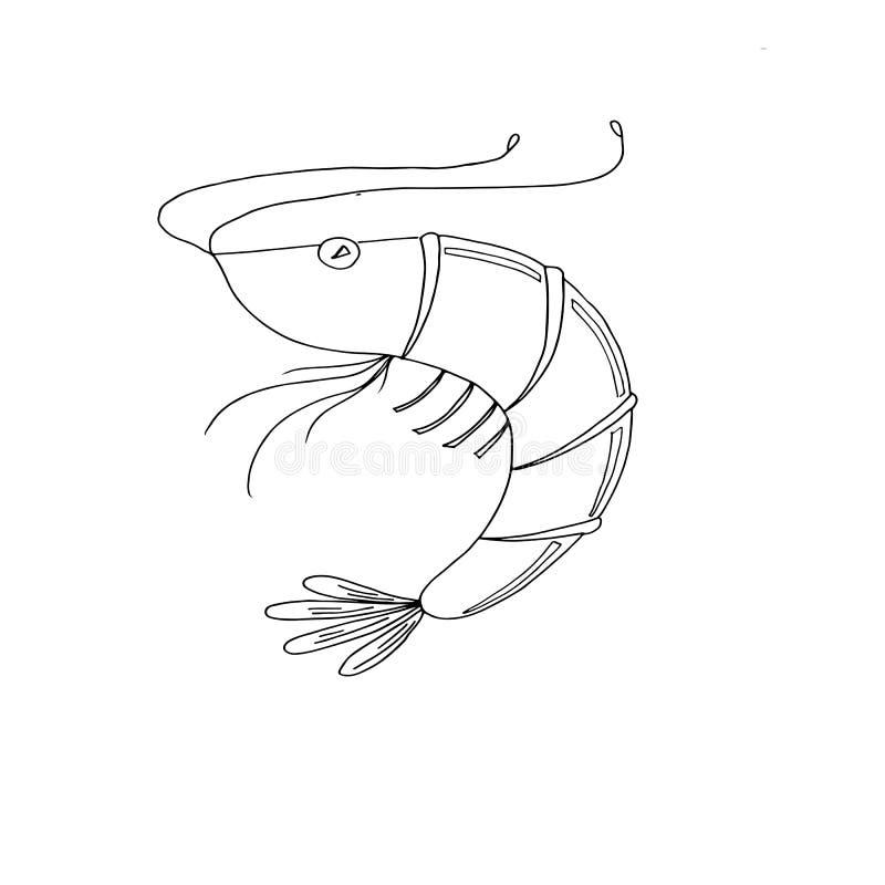 虾概略图画 向量例证