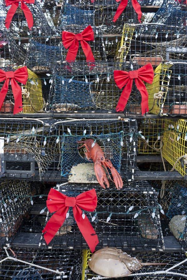 虾笼圣诞树, Provincetown,马萨诸塞 库存照片