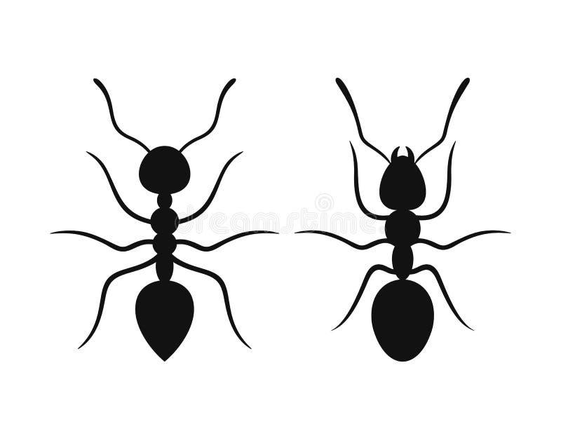 蚂蚁剪影 在白色背景的被隔绝的蚂蚁 向量例证