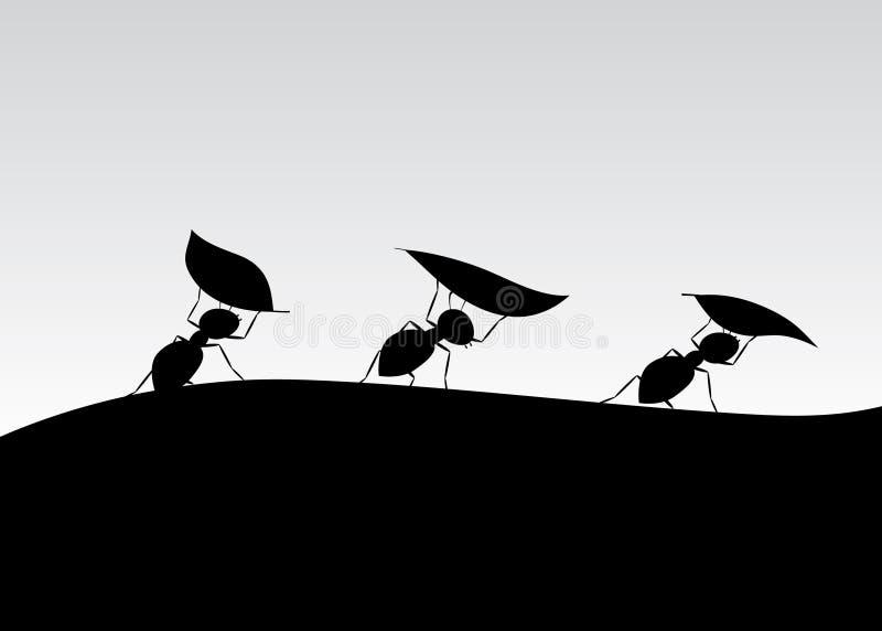 蚂蚁剪影  向量例证
