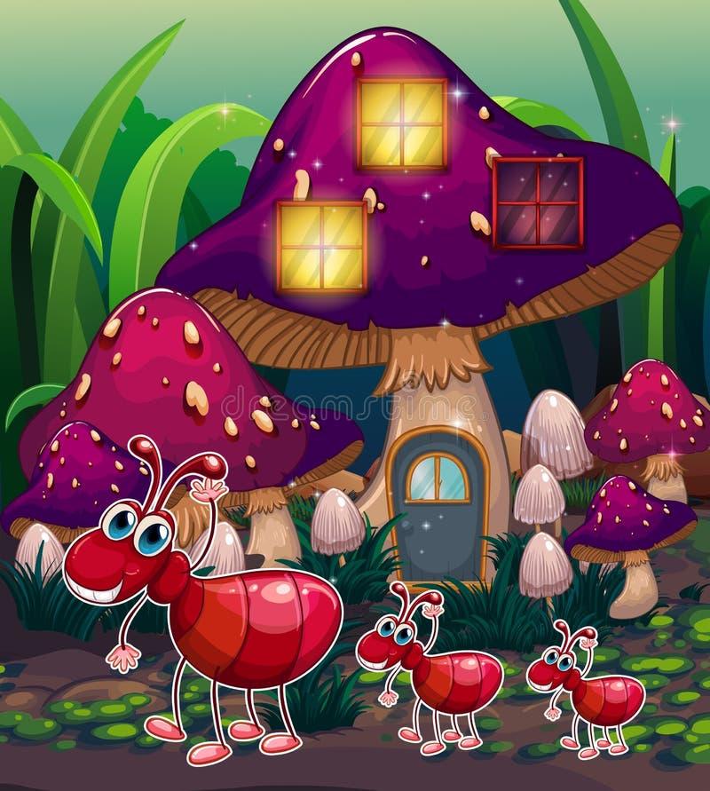 蚂蚁在蘑菇房子附近的 库存例证
