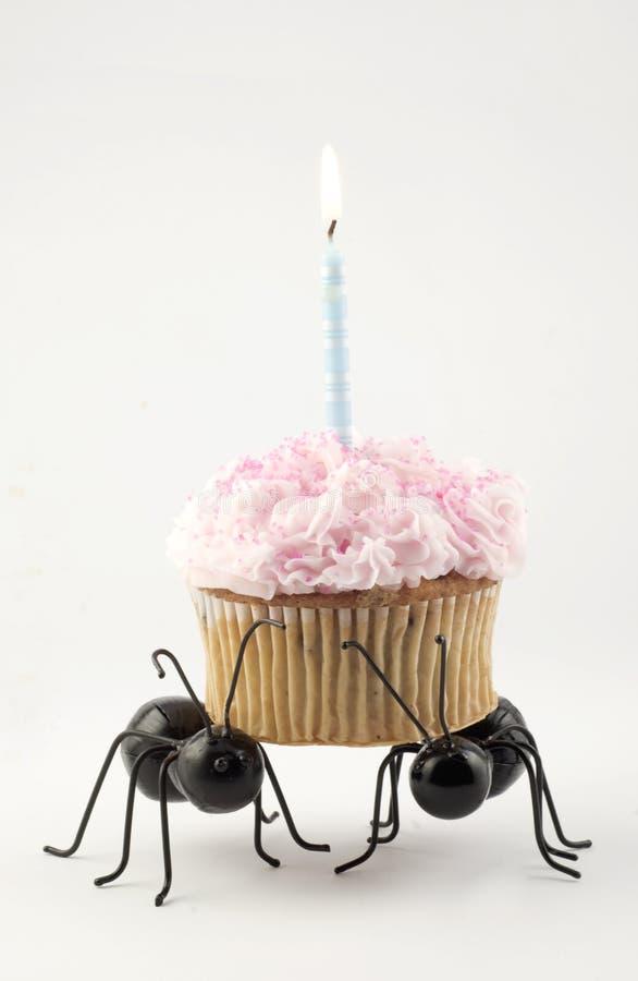 蚂蚁生日空白运载的杯形蛋糕 免版税库存照片