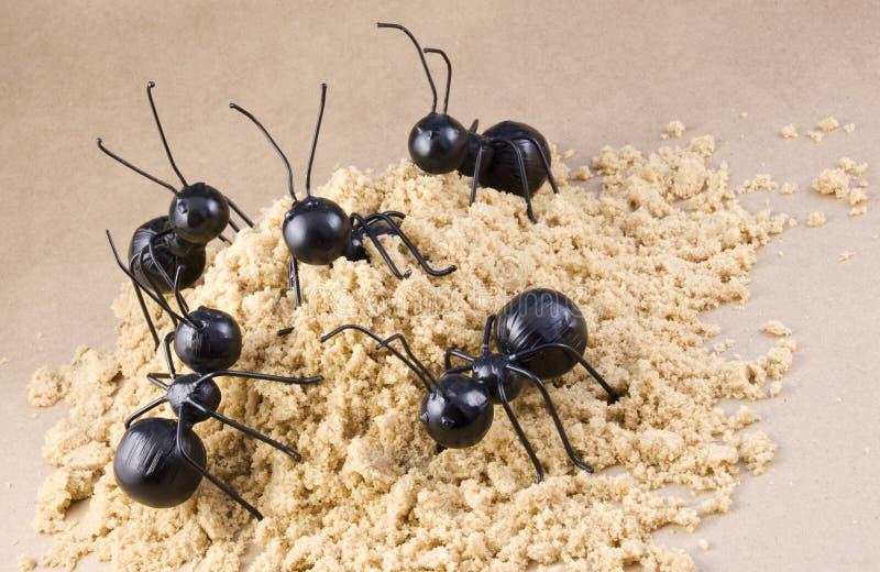 蚂蚁蚂蚁概念小山工作者