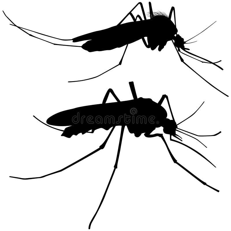 蚊子剪影 皇族释放例证