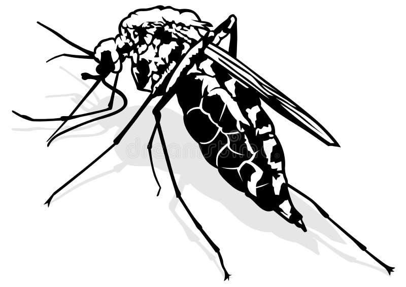 蚊子 向量例证