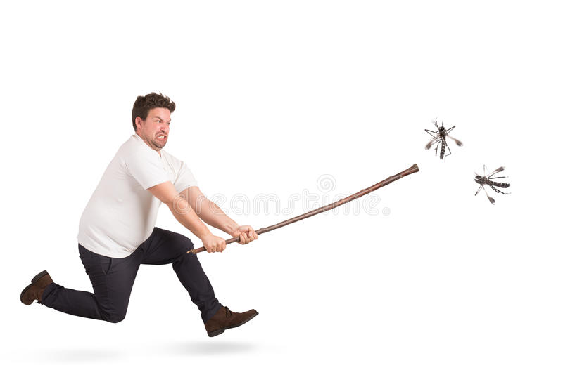 蚊子攻击 免版税库存照片