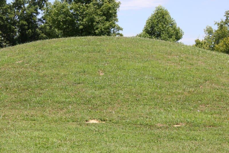 蛇土墩的仔细的审视 图库摄影