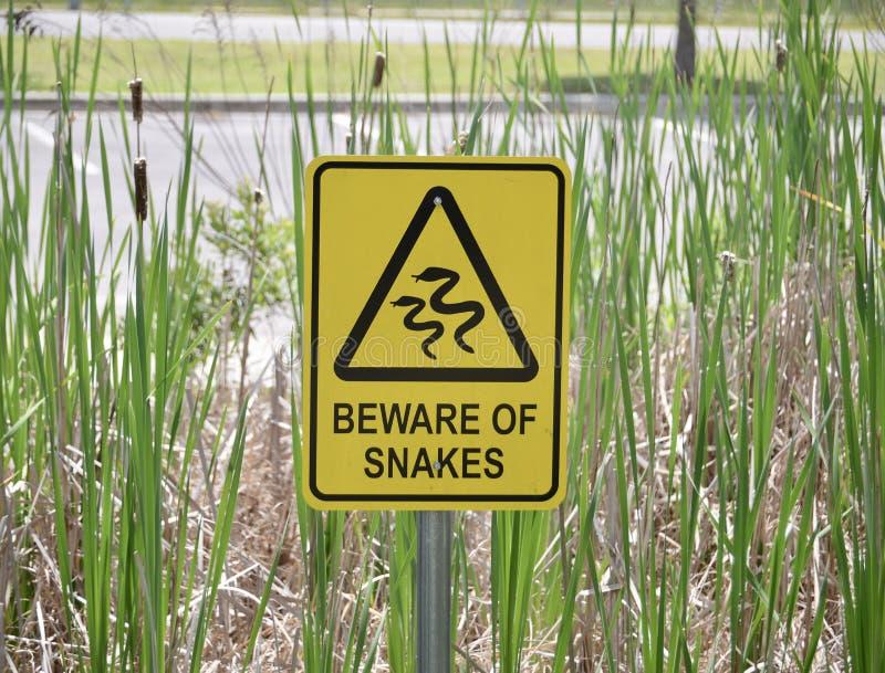 蛇栖所警告 免版税图库摄影