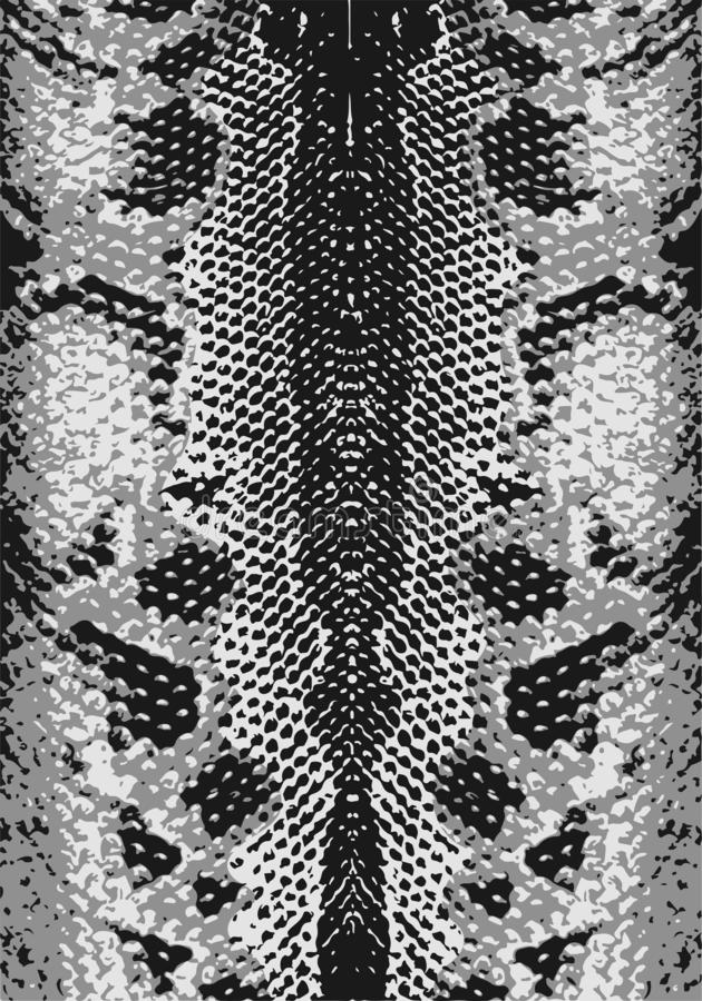 蛇皮,纹理 抽象难看的东西背景 容易改变肤色 r r 库存照片