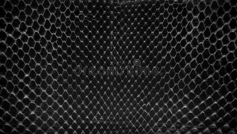 黑蛇皮,背景的abstrat皮革纹理 免版税库存照片