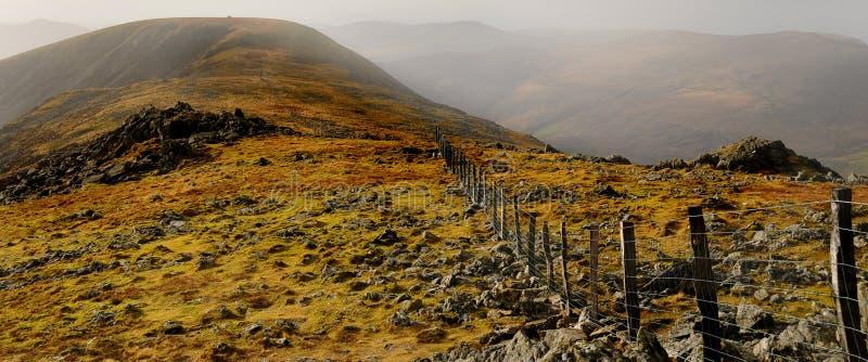 蛇麻草有薄雾的山 库存照片