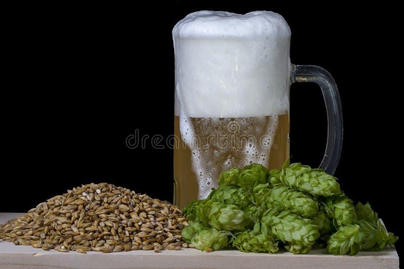 蛇麻草麦芽和啤酒 图库摄影