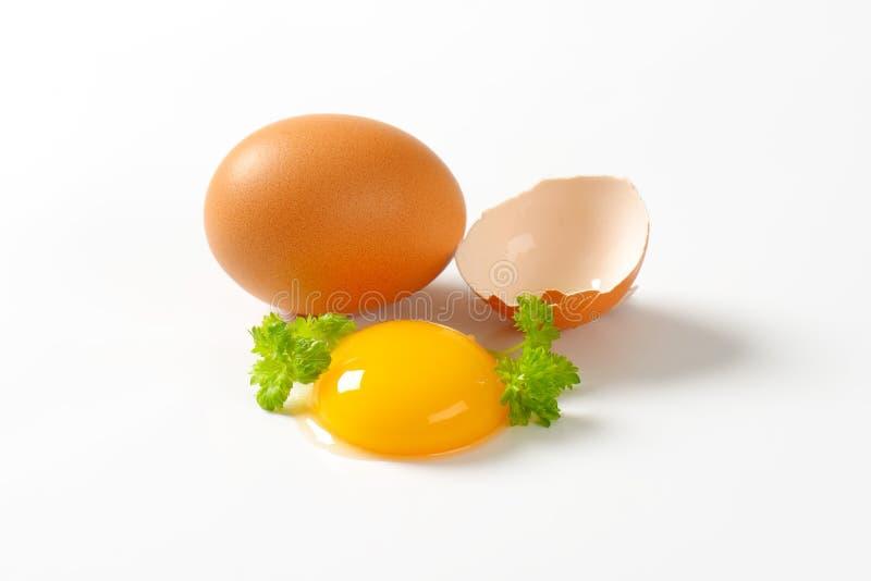 蛋原始的卵黄质 图库摄影