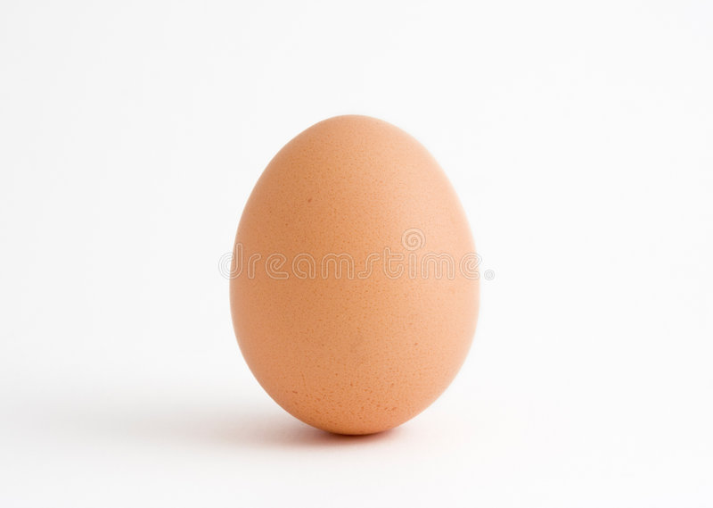 蛋唯一白色 库存照片