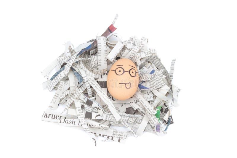 蛋在报纸的面孔玻璃回收 免版税库存图片