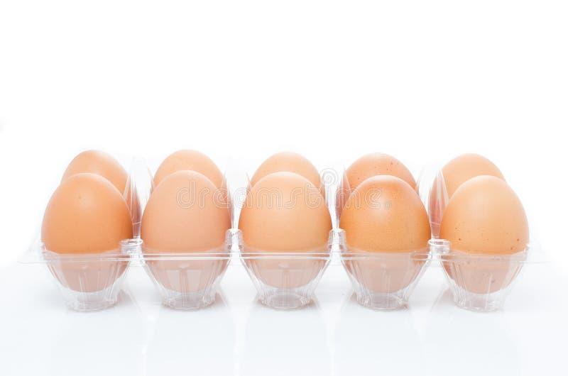 蛋塑料包裹盘子  免版税库存图片