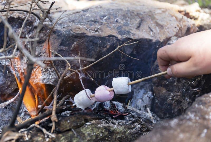 蛋白软糖在营火变成了焦糖 免版税库存图片