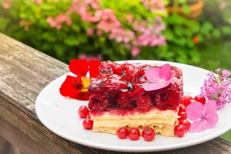 蛋糕卡片设计例证莓模板向量 图库摄影