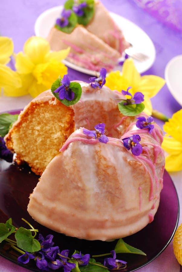 蛋糕复活节结冰环形 图库摄影