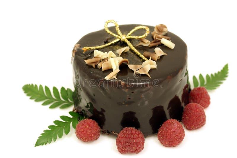 蛋糕巧克力圣诞节 库存照片