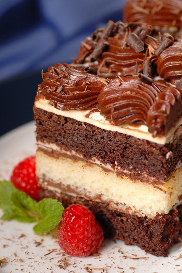 蛋糕巧克力层部分 图库摄影