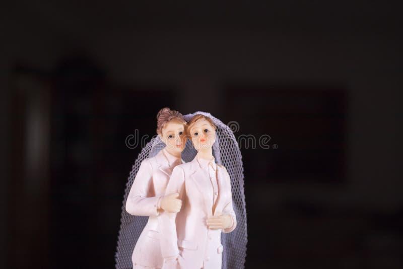 蛋糕轻便短大衣女同性恋的婚礼夫妇 免版税库存图片