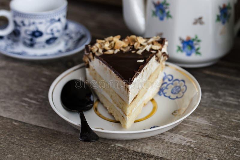 蛋糕鸟的牛奶用巧克力和椰子 免版税库存照片
