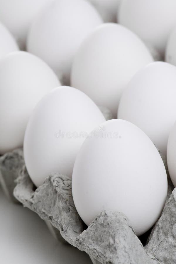 蛋装箱 免版税库存照片