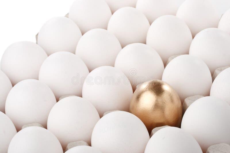 蛋金子 免版税库存照片