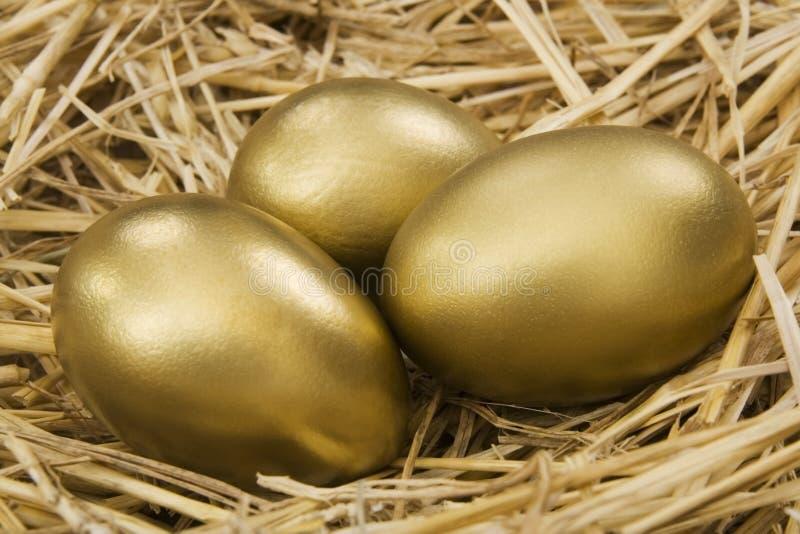 蛋金嵌套 库存图片