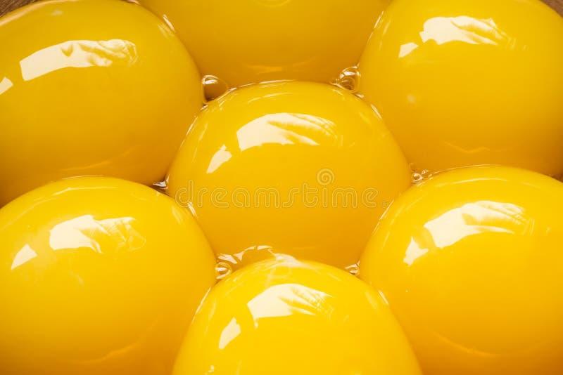 蛋黄关闭  库存照片