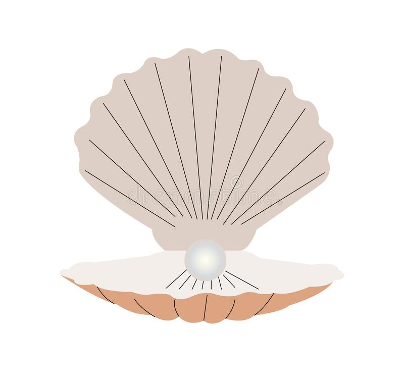 蛤壳状机件的例证有珍珠的在白色背景 皇族释放例证