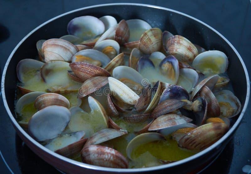 蛤蜊甲壳动物的营养食物 图库摄影