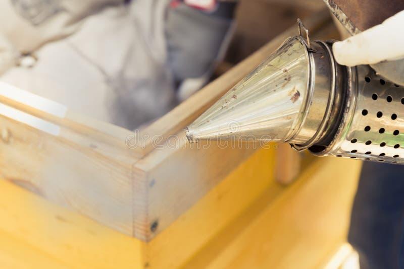 蜂农与蜂和蜂箱一起使用在蜂房 使用蜂吸烟者-收留远离蜂房的蜂的蜂农工具 免版税库存图片