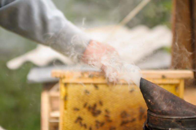 蜂农使模糊/抽远离蜂房的蜂 库存照片