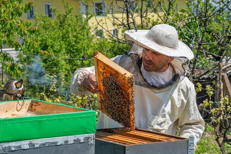 蜂农在工作 在蜂房外面的蜂老板举的架子 蜂农保存蜂 免版税库存照片