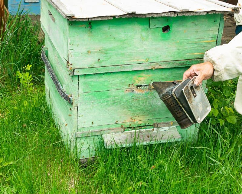 蜂农检查蜂蜂箱和蜂蜜框架  在蜂房的养蜂业工作 r 库存照片