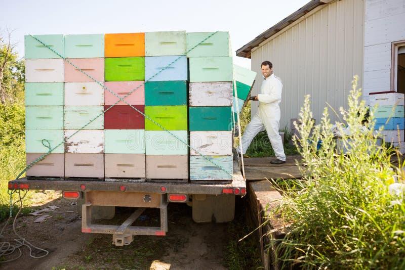 蜂农装货在卡车的蜂窝条板箱 免版税库存图片